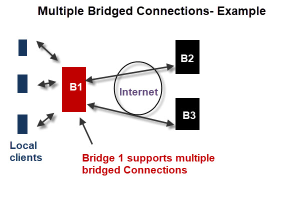 Multiple-Bridged-Connections-Example