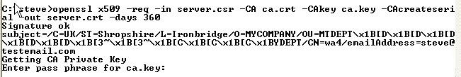 create-signed-server-certificate