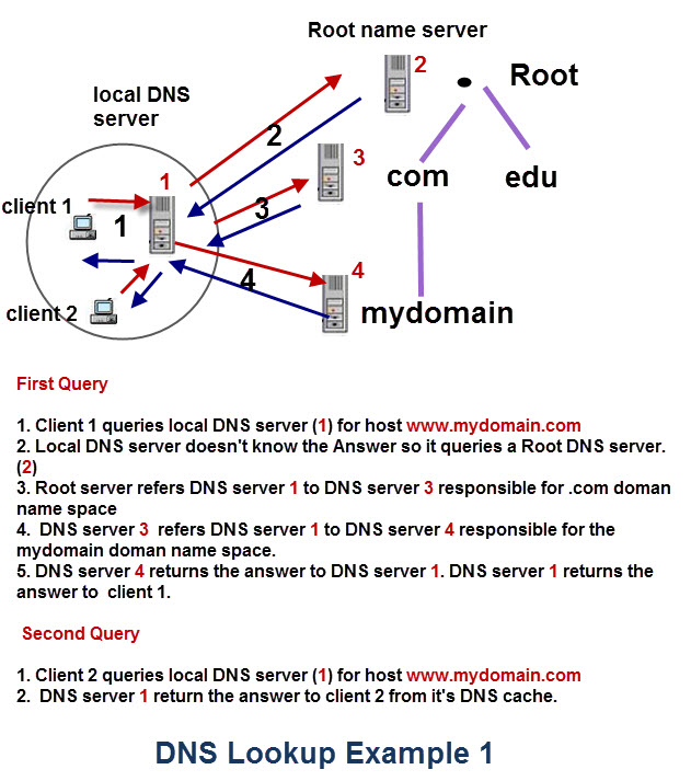 dns-lookup-example