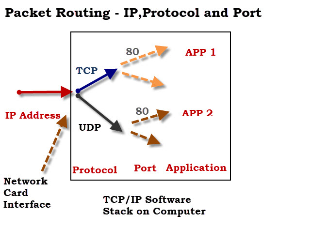 packet-routing-protocol-port